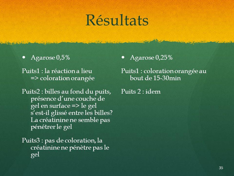 Résultats Agarose 0,5% Puits1 : la réaction a lieu => coloration orangée Puits2 : billes au fond du puits, présence dune couche de gel en surface => l