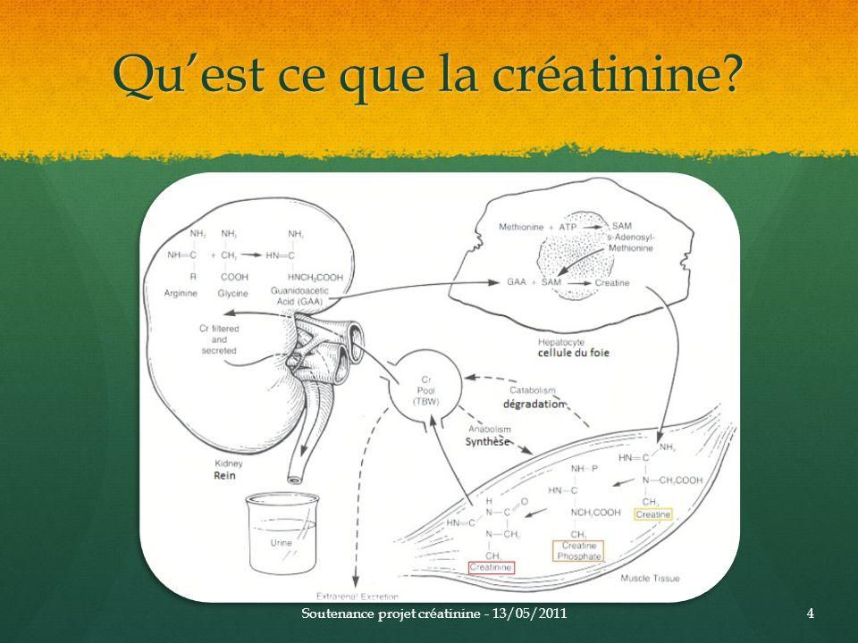 Quest ce que la créatinine? Soutenance projet créatinine - 13/05/20114