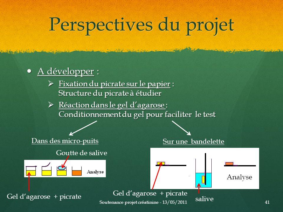 Perspectives du projet A développer : A développer : Fixation du picrate sur le papier : Structure du picrate à étudier Fixation du picrate sur le pap