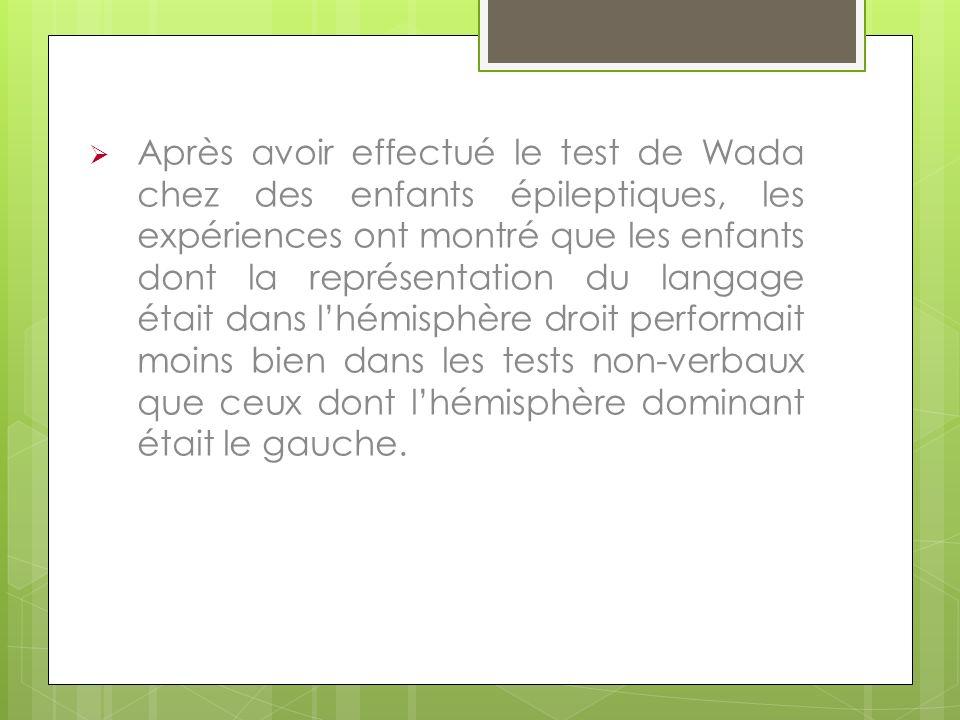 Après avoir effectué le test de Wada chez des enfants épileptiques, les expériences ont montré que les enfants dont la représentation du langage était