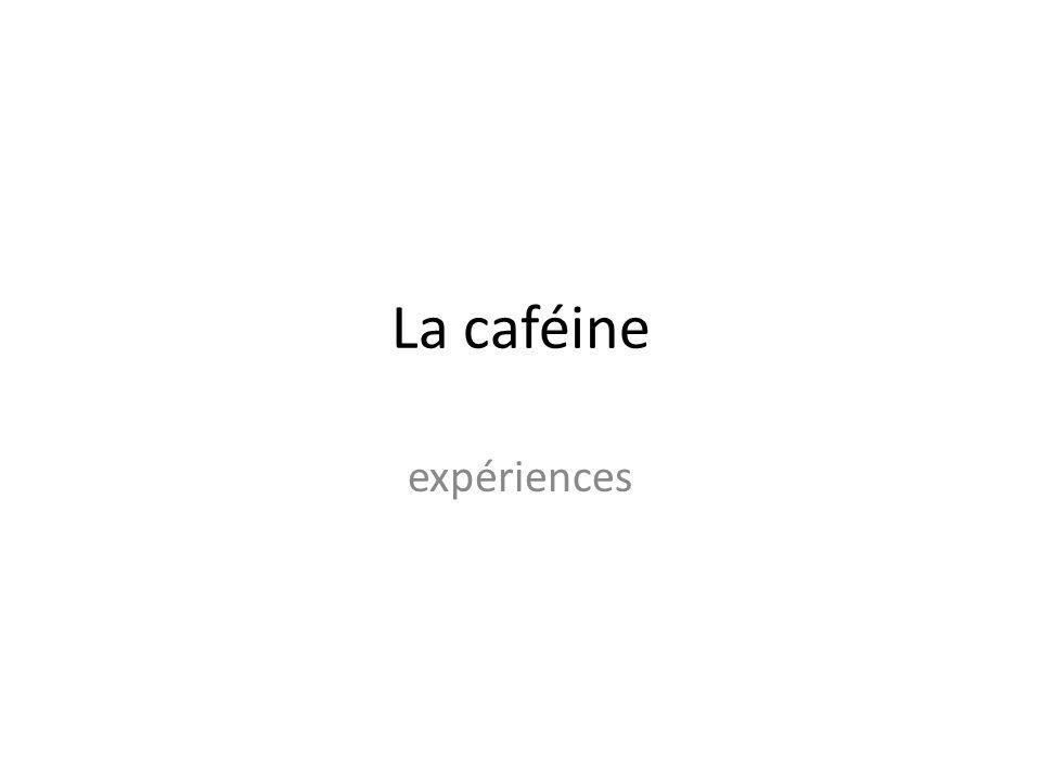 La caféine expériences