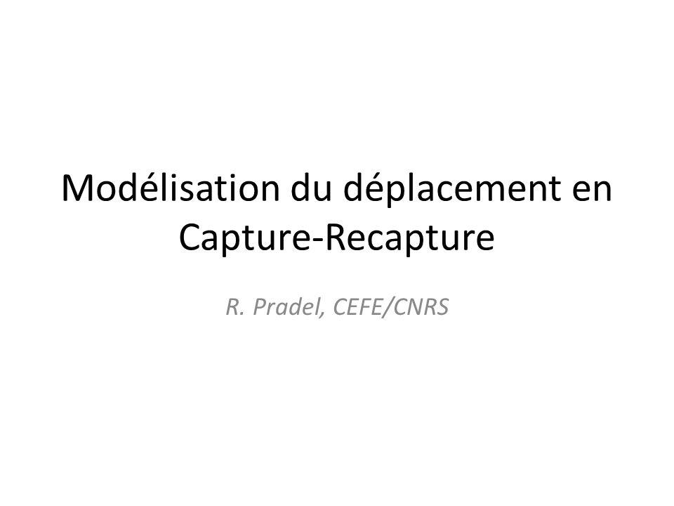 Modélisation du déplacement en Capture-Recapture R. Pradel, CEFE/CNRS