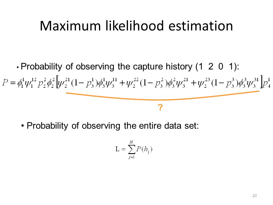 20 Maximum likelihood estimation ? Probability of observing the capture history (1 2 0 1): Probability of observing the entire data set: