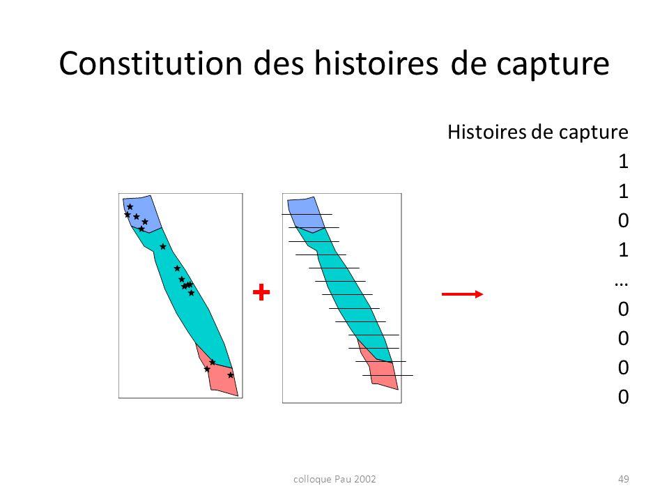 colloque Pau 200249 Constitution des histoires de capture Histoires de capture 1 0 1 … 0 +