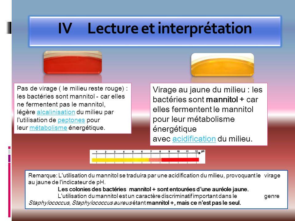 IVLecture et interprétation Pas de virage ( le milieu reste rouge) : les bactéries sont mannitol - car elles ne fermentent pas le mannitol, légère alc