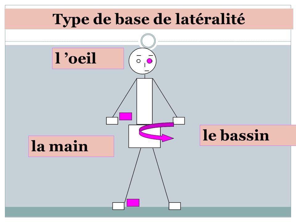 l oeil le bassin la main Type de base de latéralité