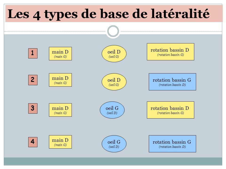 Les 4 types de base de latéralité oeil D (oeil G) main D (main G) rotation bassin D (rotation bassin G) oeil D (oeil G) main D (main G) rotation bassi