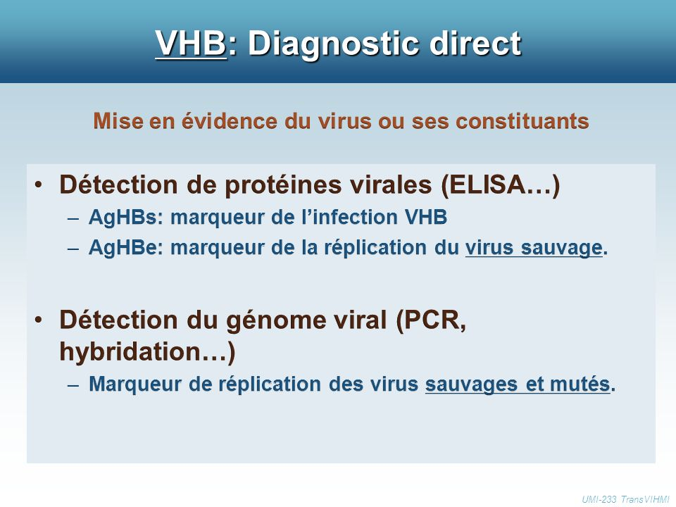 VHB: Diagnostic direct UMI-233 TransVIHMI