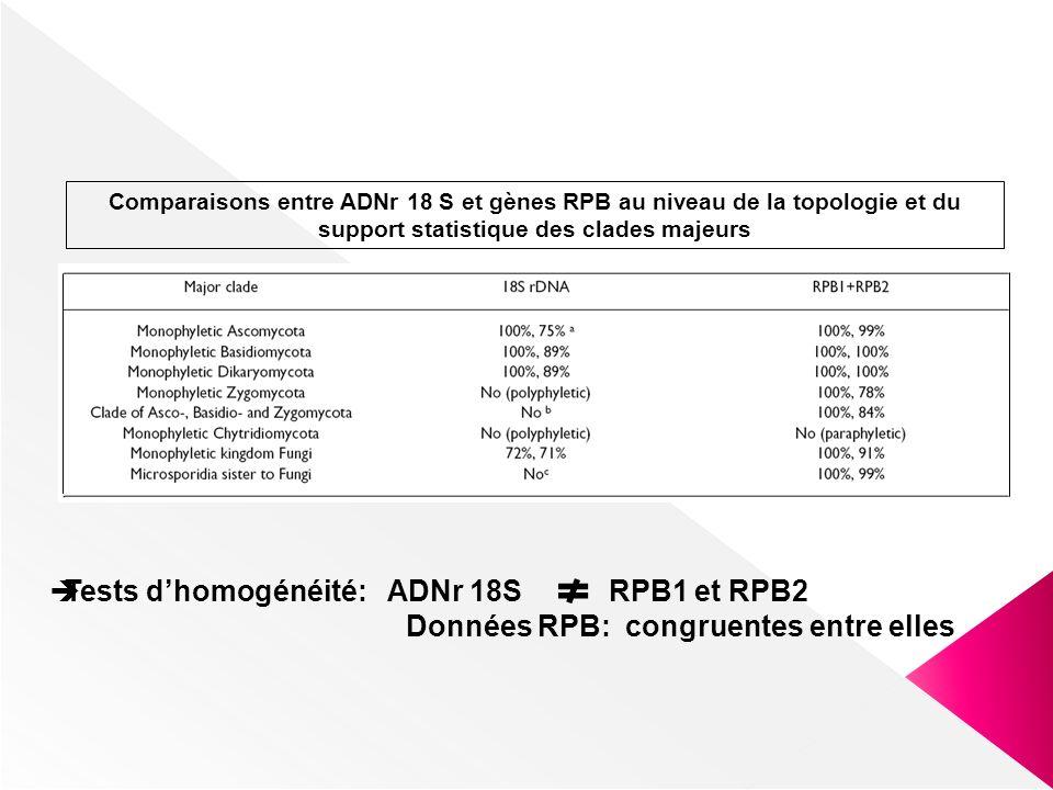 Comparaisons entre ADNr 18 S et gènes RPB au niveau de la topologie et du support statistique des clades majeurs Tests dhomogénéité: ADNr 18S RPB1 et