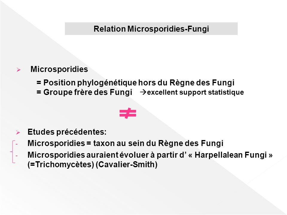 = Position phylogénétique hors du Règne des Fungi = Groupe frère des Fungi excellent support statistique Etudes précédentes: - Microsporidies = taxon