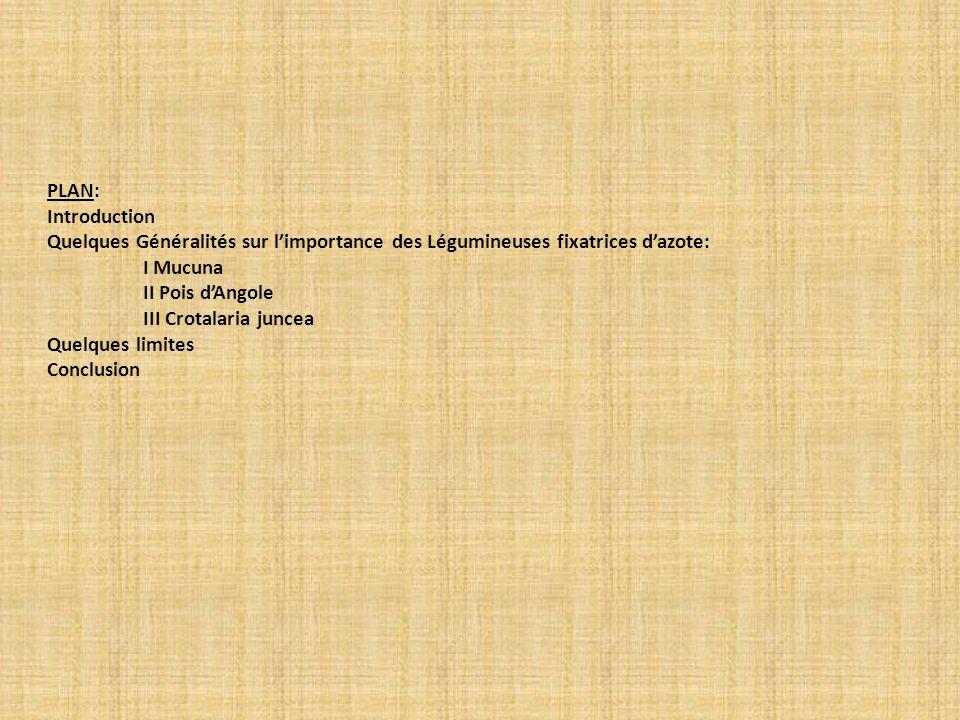 PLAN: Introduction Quelques Généralités sur limportance des Légumineuses fixatrices dazote: I Mucuna II Pois dAngole III Crotalaria juncea Quelques li