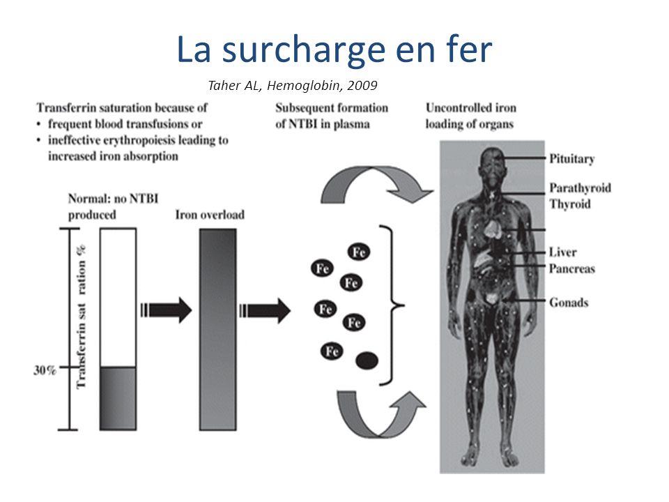La surcharge en fer Taher AL, Hemoglobin, 2009