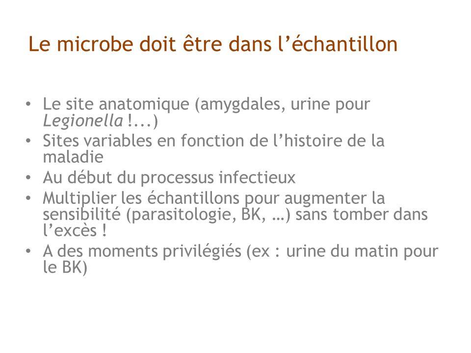 Le microbe doit être dans léchantillon Le site anatomique (amygdales, urine pour Legionella !...) Sites variables en fonction de lhistoire de la maladie Au début du processus infectieux Multiplier les échantillons pour augmenter la sensibilité (parasitologie, BK, …) sans tomber dans lexcès .