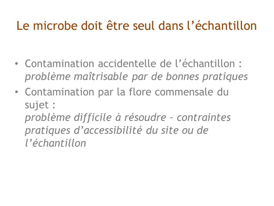 Le microbe doit être seul dans léchantillon Contamination accidentelle de léchantillon : problème maîtrisable par de bonnes pratiques Contamination par la flore commensale du sujet : problème difficile à résoudre – contraintes pratiques daccessibilité du site ou de léchantillon
