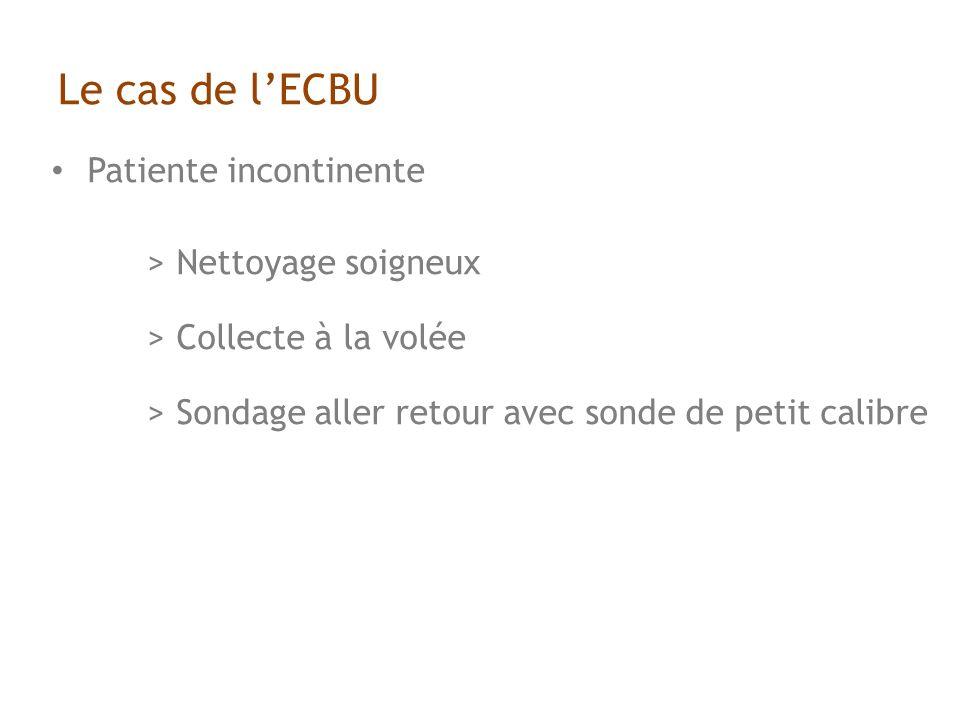 Le cas de lECBU Patiente incontinente > Nettoyage soigneux > Collecte à la volée > Sondage aller retour avec sonde de petit calibre