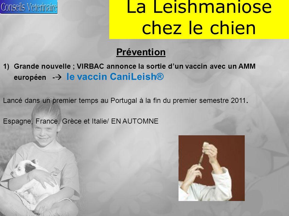 La Leishmaniose chez le chien Prévention 1)Grande nouvelle ; VIRBAC annonce la sortie dun vaccin avec un AMM européen - le vaccin CaniLeish® Lancé dans un premier temps au Portugal à la fin du premier semestre 2011.