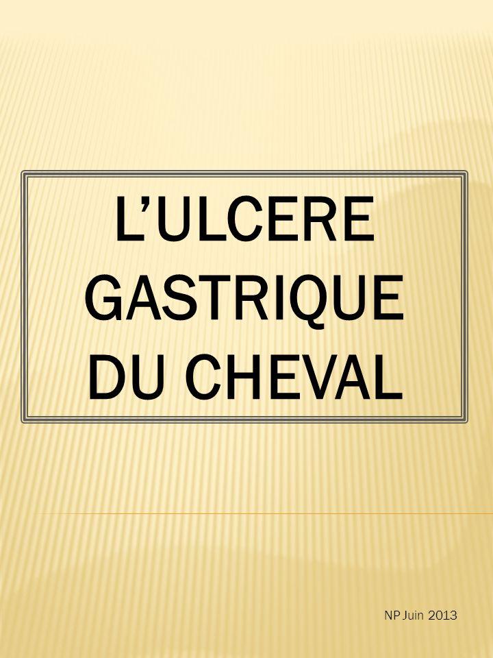 7.Y-a-t-il un système de score standard pour classer les ulcères gastriques .