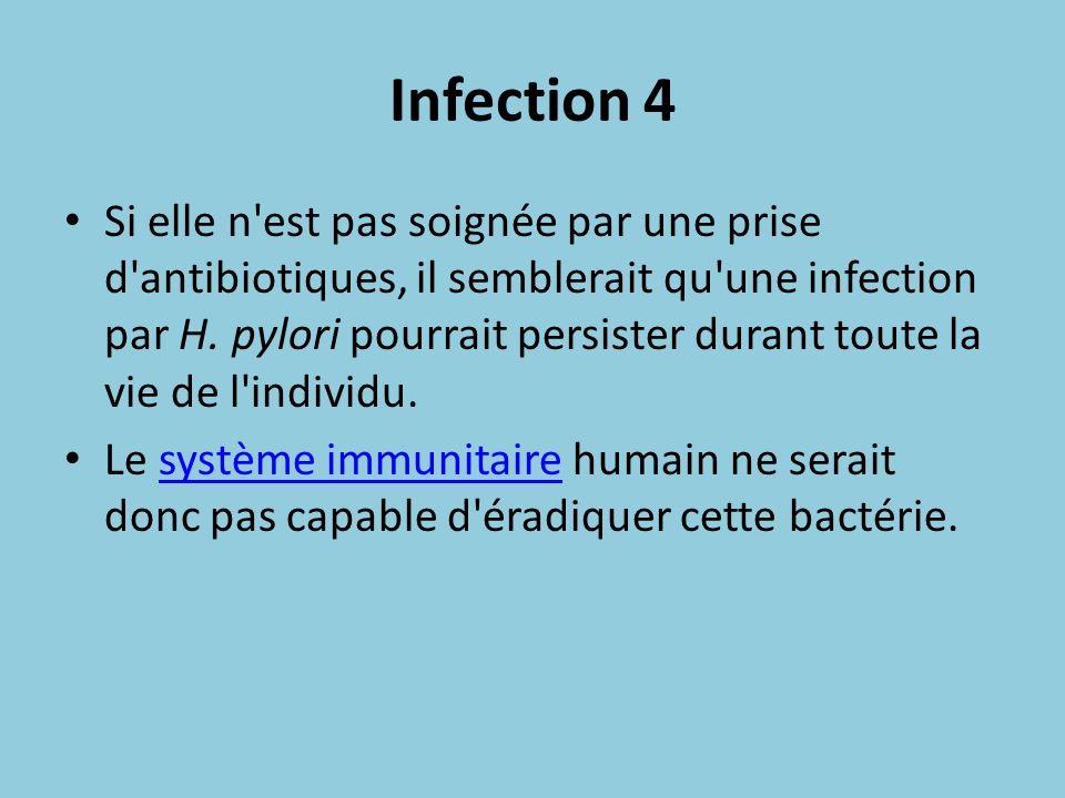 Infection 4 Si elle n'est pas soignée par une prise d'antibiotiques, il semblerait qu'une infection par H. pylori pourrait persister durant toute la v