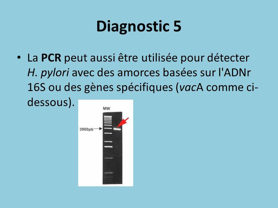 Diagnostic 5 La PCR peut aussi être utilisée pour détecter H. pylori avec des amorces basées sur l'ADNr 16S ou des gènes spécifiques (vacA comme ci- d