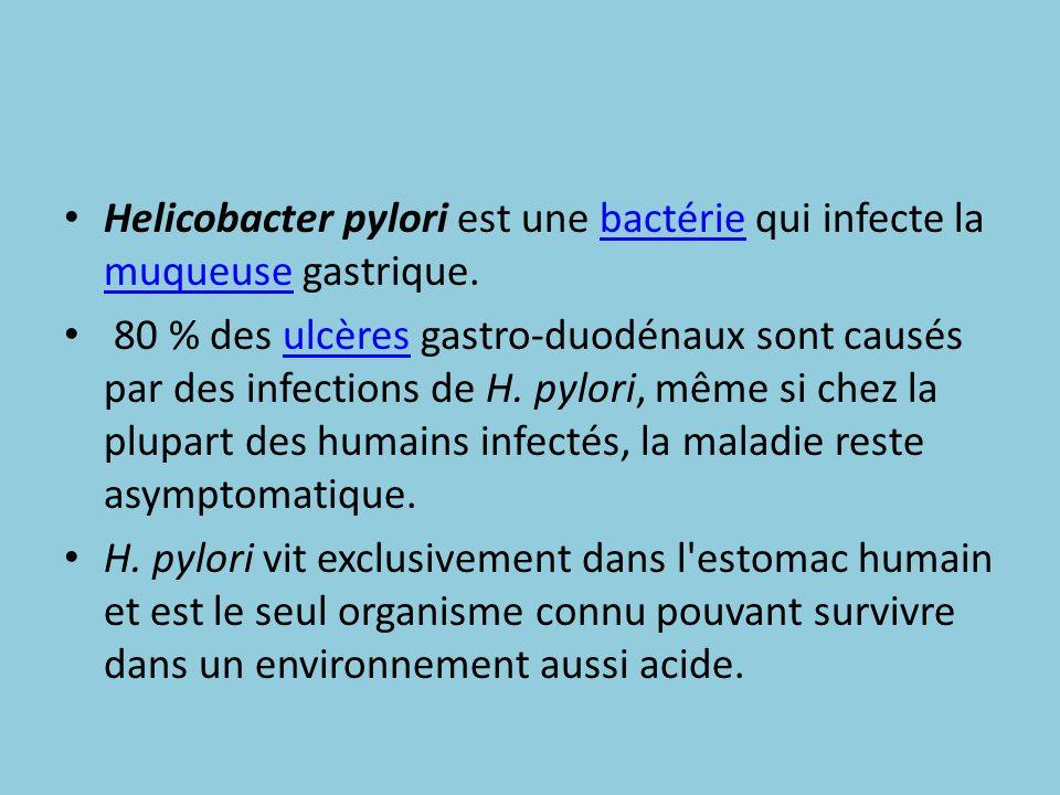 Histoire 1 En 1875, des scientifiques allemands découvrirent une bactérie hélicoïdale dans des estomacs humains.1875estomacs Cette bactérie fut redécouverte en 1982 par deux chercheurs australiens, J.