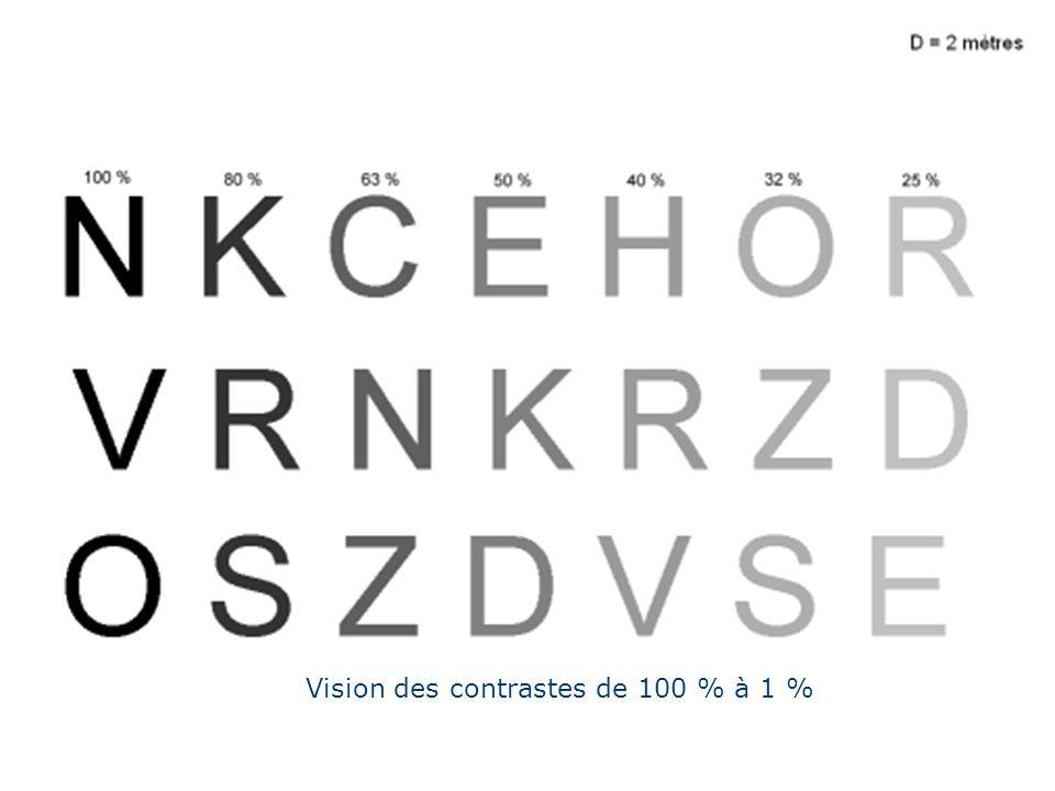 Vision des contrastes de 100 % à 1 %