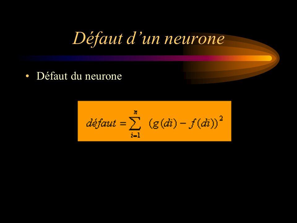 Défaut dun neurone Défaut du neurone