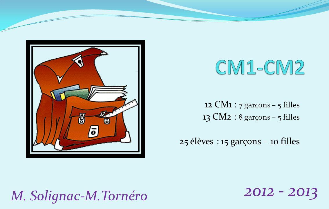 12 CM1 : 7 garçons – 5 filles 13 CM2 : 8 garçons – 5 filles 25 élèves : 15 garçons – 10 filles 2012 - 2013 M. Solignac-M.Tornéro