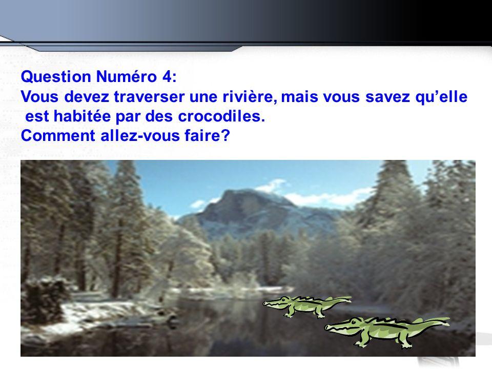 Question Numéro 4: Vous devez traverser une rivière, mais vous savez quelle est habitée par des crocodiles. Comment allez-vous faire?