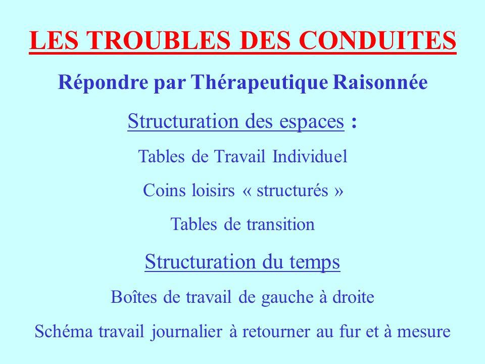 LES TROUBLES DES CONDUITES Répondre par Thérapeutique Raisonnée Structuration des espaces : Tables de Travail Individuel Coins loisirs « structurés »