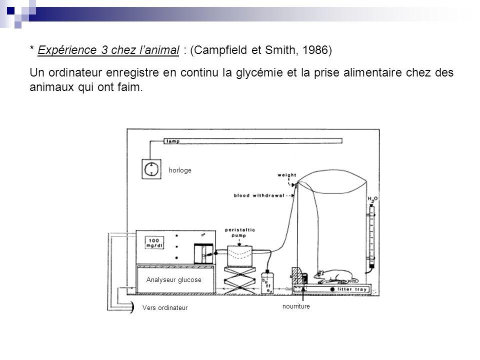 * Expérience 3 chez lanimal : (Campfield et Smith, 1986) Un ordinateur enregistre en continu la glycémie et la prise alimentaire chez des animaux qui ont faim.