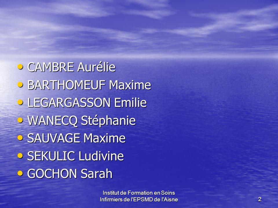 Institut de Formation en Soins Infirmiers de l'EPSMD de l'Aisne2 CAMBRE Aurélie BARTHOMEUF Maxime LEGARGASSON Emilie WANECQ Stéphanie SAUVAGE Maxime S