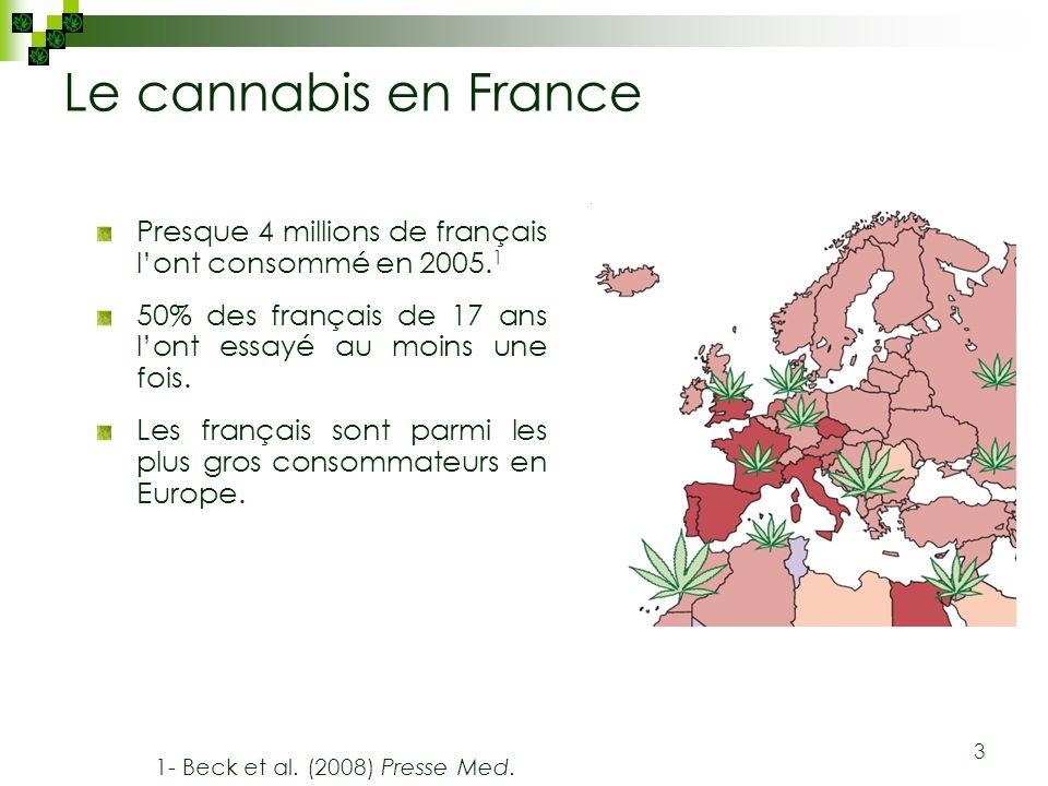 3 Le cannabis en France Presque 4 millions de français lont consommé en 2005. 1 50% des français de 17 ans lont essayé au moins une fois. Les français