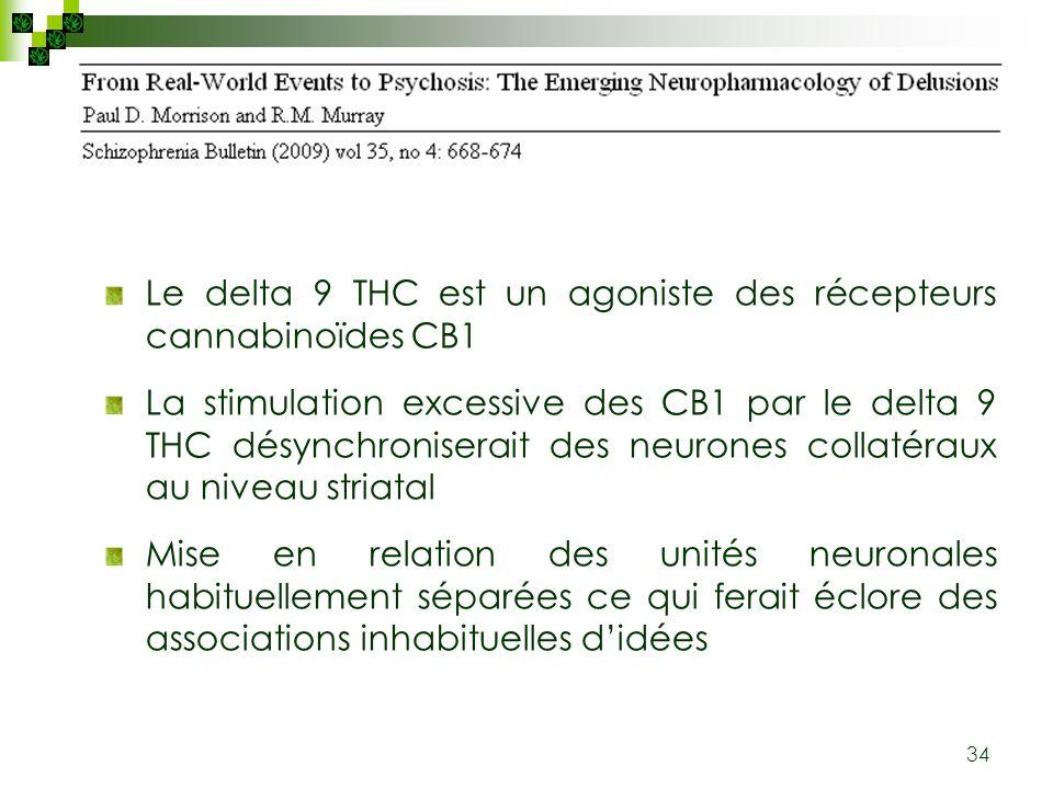 34 Le delta 9 THC est un agoniste des récepteurs cannabinoïdes CB1 La stimulation excessive des CB1 par le delta 9 THC désynchroniserait des neurones