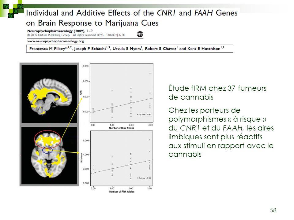58 Étude fIRM chez 37 fumeurs de cannabis Chez les porteurs de polymorphismes « à risque » du CNR1 et du FAAH, les aires limbiques sont plus réactifs