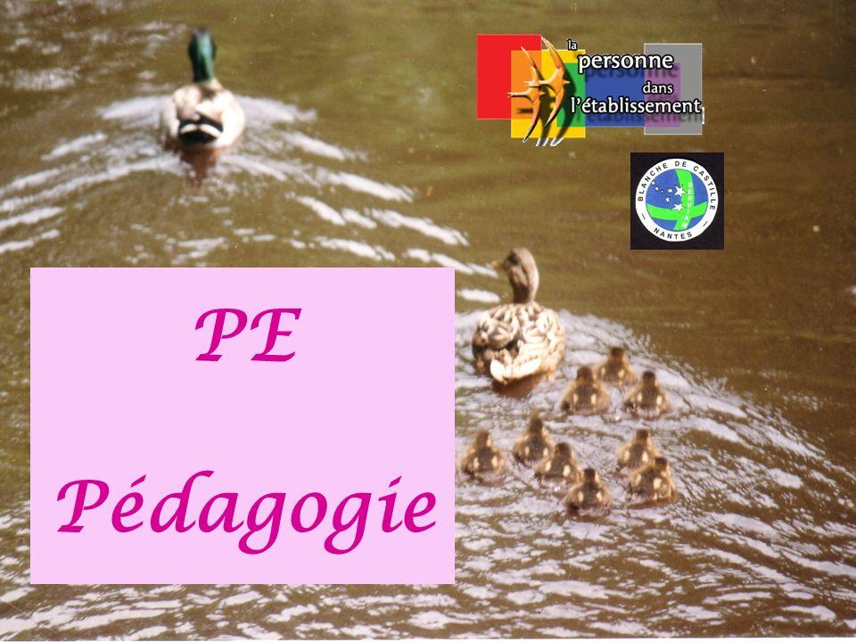 PE Pédagogie