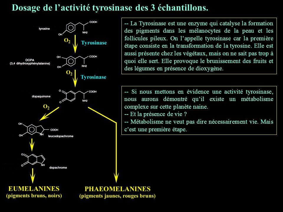 Dosage de lactivité tyrosinase des 3 échantillons.