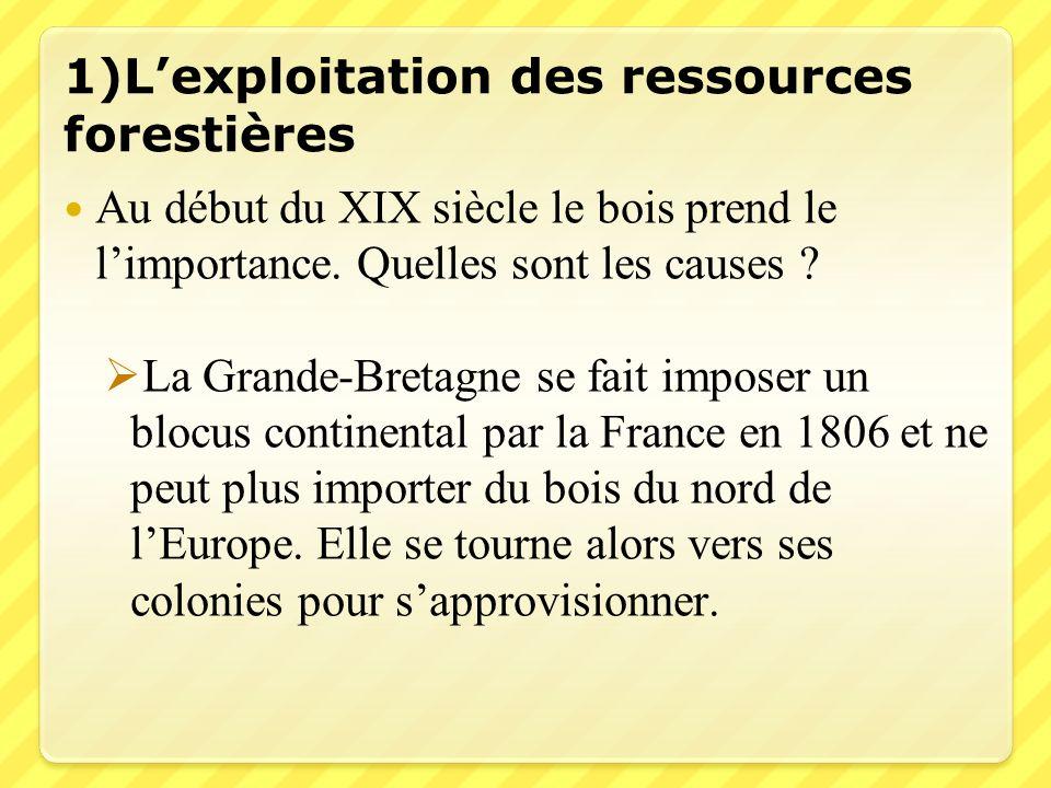 1)Lexploitation des ressources forestières Au début du XIX siècle le bois prend le limportance. Quelles sont les causes ? La Grande-Bretagne se fait i