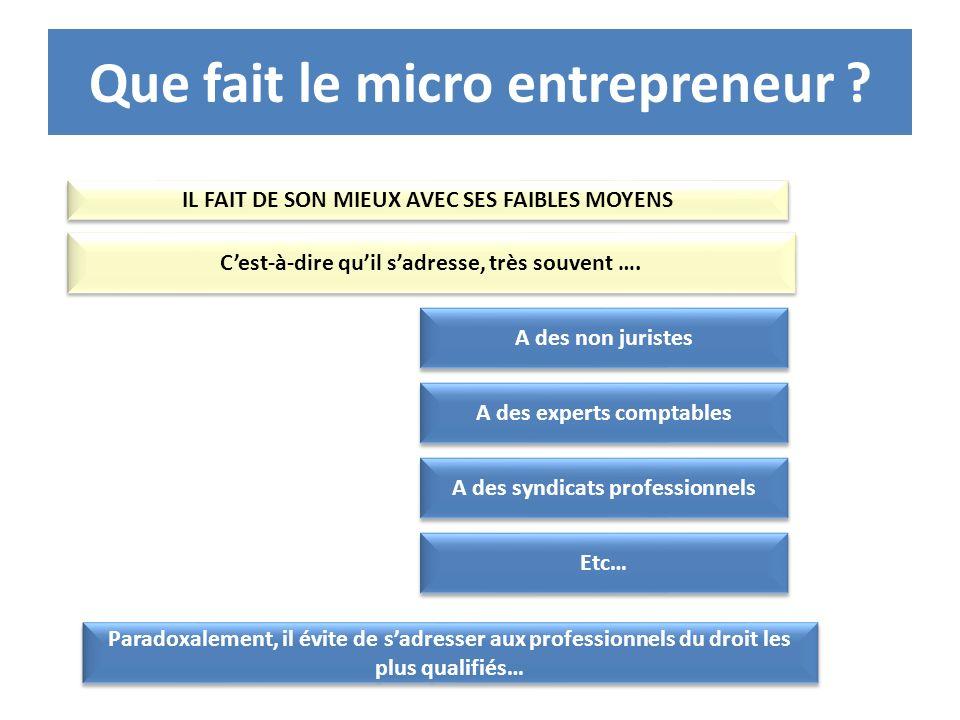 Que fait le micro entrepreneur ? IL FAIT DE SON MIEUX AVEC SES FAIBLES MOYENS Cest-à-dire quil sadresse, très souvent …. A des non juristes A des expe