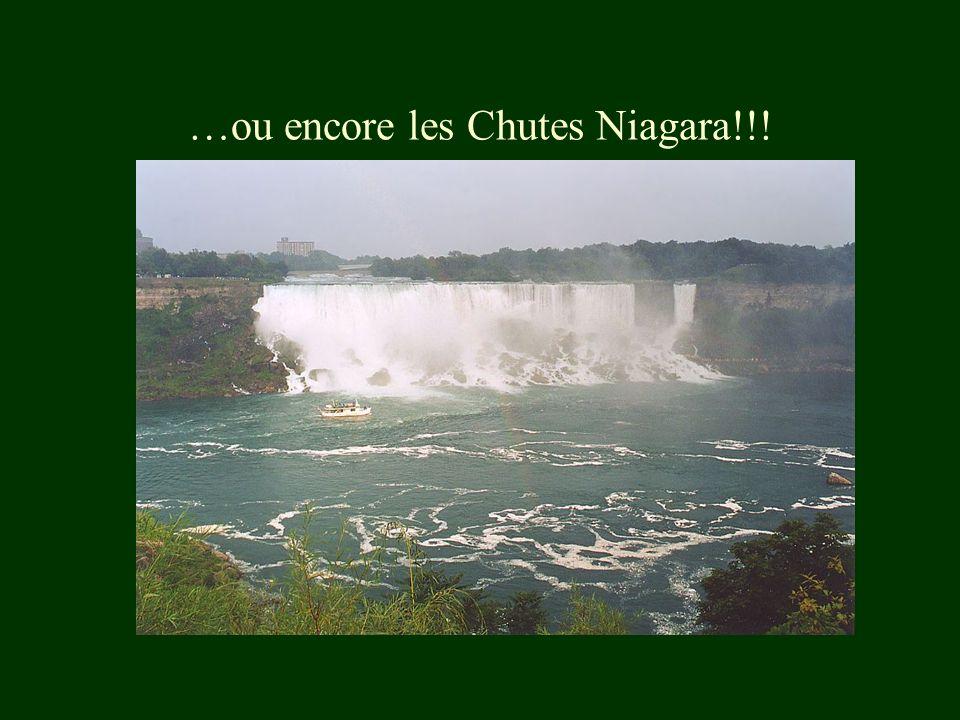…ou encore les Chutes Niagara!!!