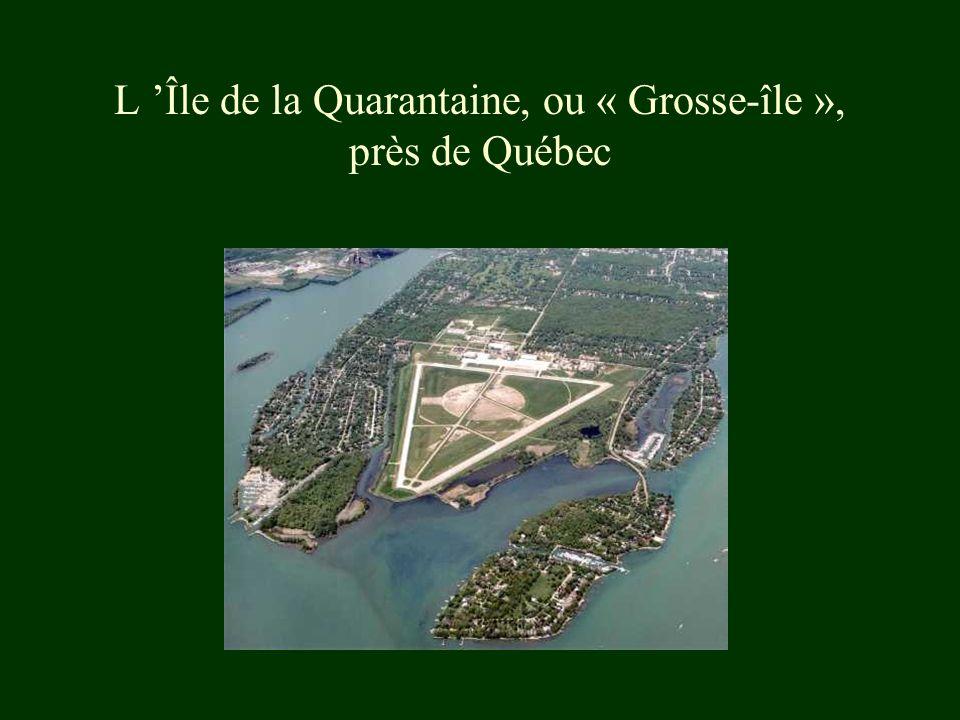 L Île de la Quarantaine, ou « Grosse-île », près de Québec