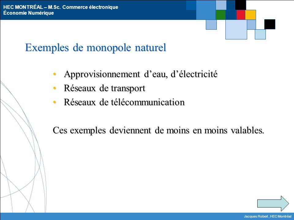 HEC MONTRÉAL – M.Sc. Commerce électronique Économie Numérique Jacques Robert, HEC Montréal Exemples de monopole naturel Approvisionnement deau, délect