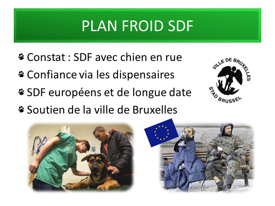 PLAN FROID SDF Constat : SDF avec chien en rue Confiance via les dispensaires SDF européens et de longue date Soutien de la ville de Bruxelles