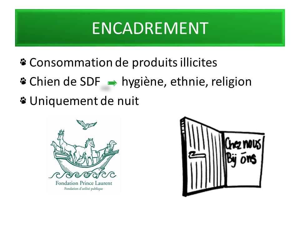 ENCADREMENT Consommation de produits illicites Chien de SDF hygiène, ethnie, religion Uniquement de nuit