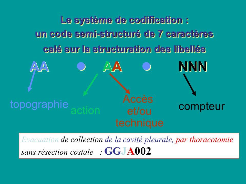 Le système de codification : un code semi-structuré de 7 caractères calé sur la structuration des libellés AA AA NNN Le système de codification : un c