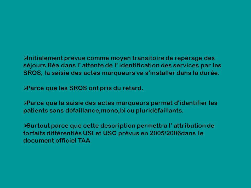 Initialement prévue comme moyen transitoire de repérage des séjours Réa dans l' attente de l' identification des services par les SROS, la saisie des
