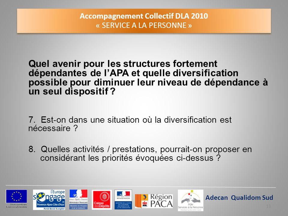 Accompagnement Collectif DLA 2010 « SERVICE A LA PERSONNE » Quel avenir pour les structures fortement dépendantes de lAPA et quelle diversification po