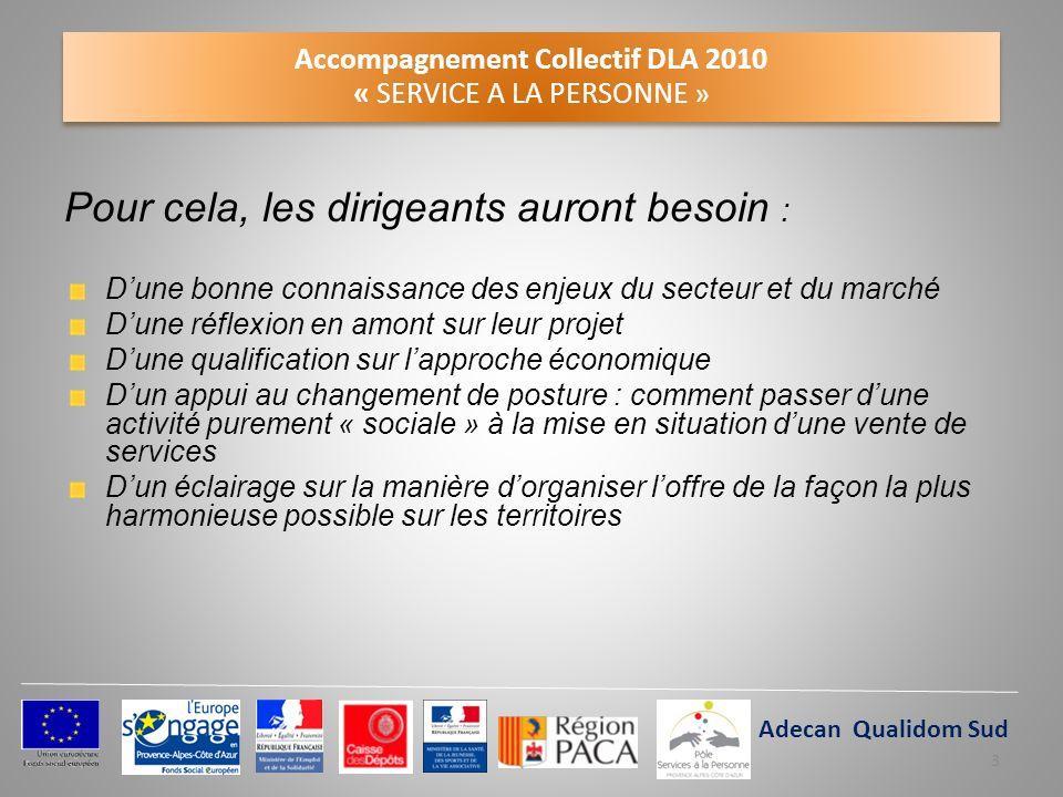 Accompagnement Collectif DLA 2010 « SERVICE A LA PERSONNE » Pour cela, les dirigeants auront besoin : Dune bonne connaissance des enjeux du secteur et