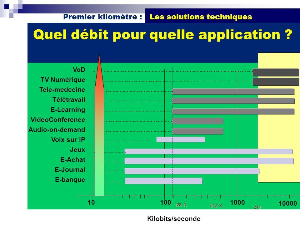 Premier kilomètre : Les solutions techniques Quel débit pour quelle application ? Kilobits/seconde VoD TV Numérique Tele-medecine Télétravail E-Learni