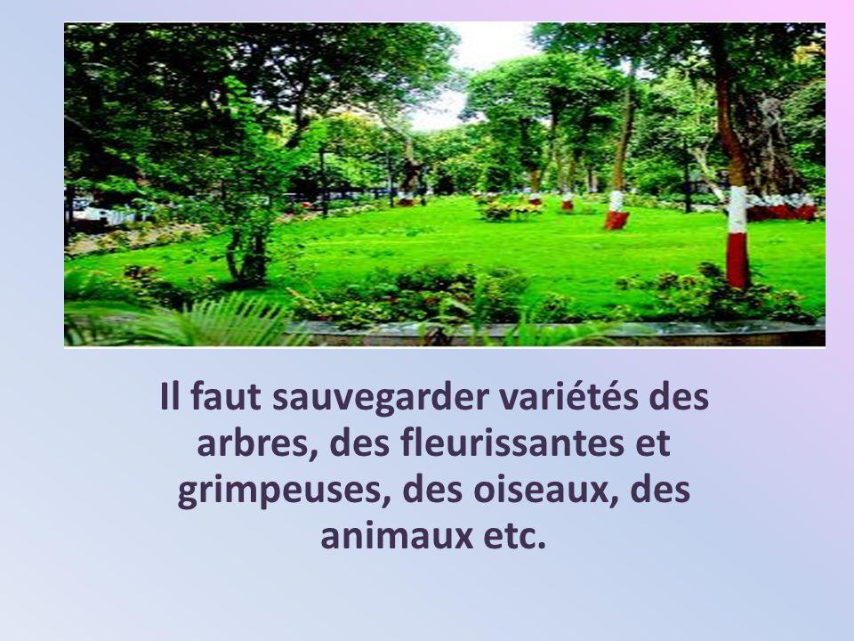 Il faut sauvegarder variétés des arbres, des fleurissantes et grimpeuses, des oiseaux, des animaux etc.