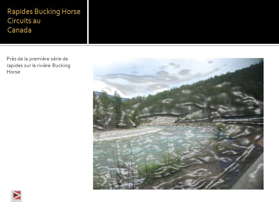 Rapides Bucking Horse Circuits au Canada Rivière Bucking Horse, près du point de départ du circuit